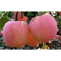 甘肃特产 天水花牛苹果秦安苹果精选特级红富士水果6斤包邮 抢鲜